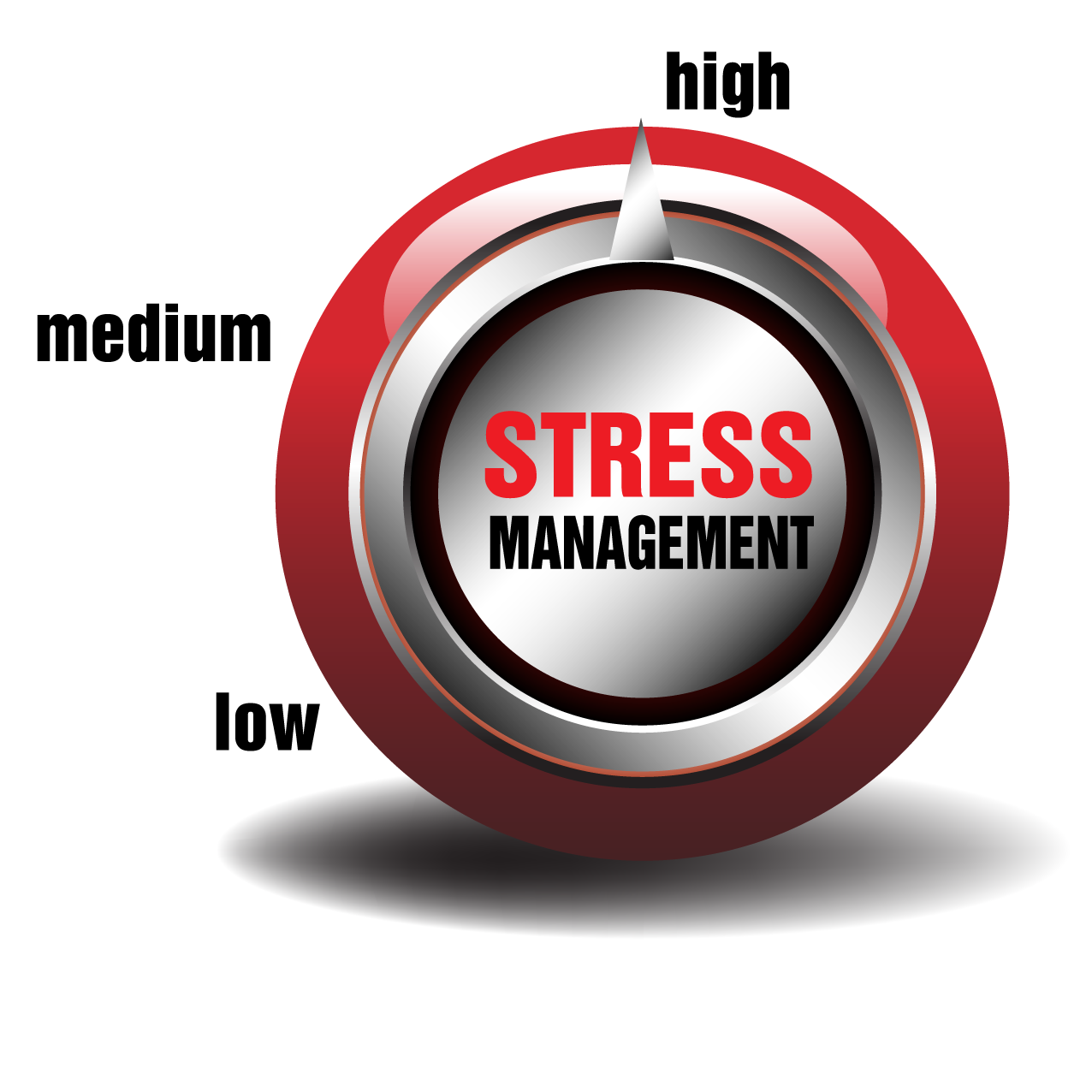 Successful People Believe Stress is Good